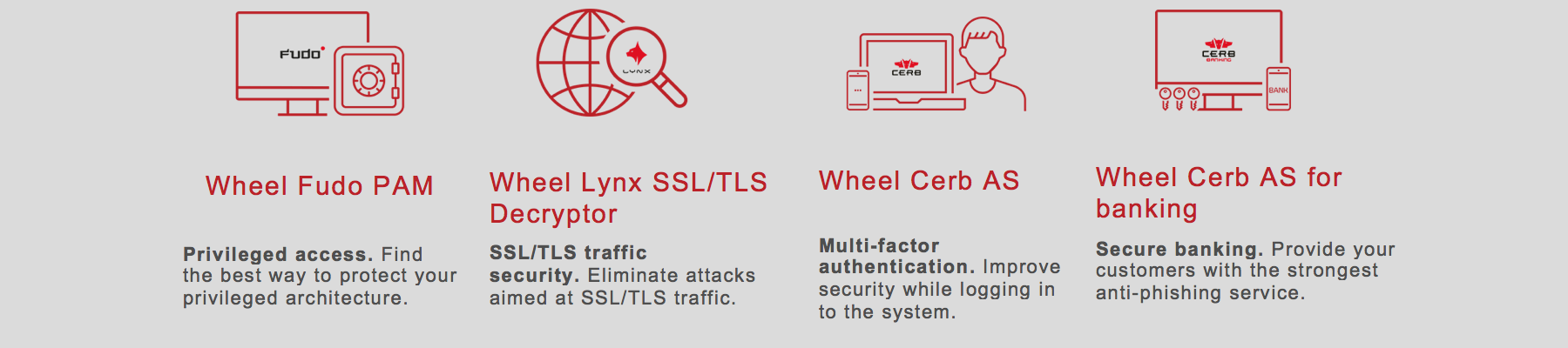 Wheel Systems - IT Security Solutions
